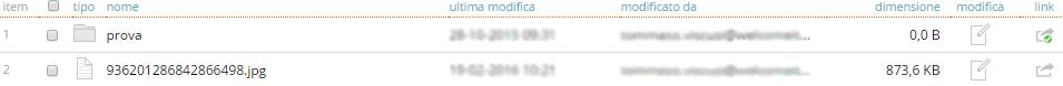 link_a_file_o_cartella